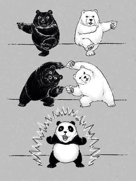 Pandas are Biracial Panda Power